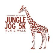 Jungle Jog 5k run and Walk
